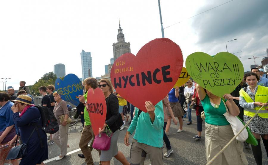 Ludzie maszerujący w obronie Puszczy Białowieskiej
