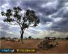 Wraki w australijskim outbacku