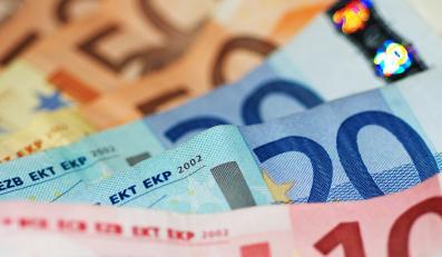 Polska nie wykorzystuje elastycznej linii kredytowej