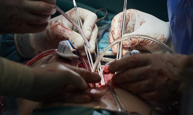 Tak się naprawia zastawkę w sercu i ratuje życie pacjenta [ZOBACZ ZDJĘCIA]