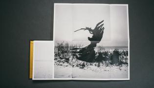 """Zdjęcie z albumu """"Echo"""""""