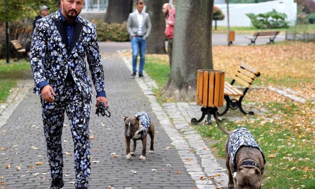 W co on ubrał siebie i... psy? Artur Szpilka na spacerze ze swoimi pupilami [FOTO]