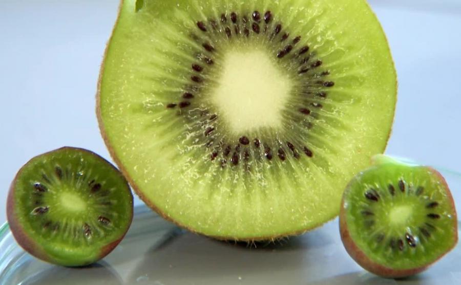 Minikiwi i kiwi