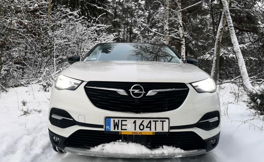Opel jedzie na prąd. Niemiecki producent wprowadzi cztery zelektryfikowane auta do 2020 r. A do 2024 r. zaoferuje 100 proc. zelektryfikowanych modeli. Firma planuje też dalsze udoskonalanie silników spalinowych