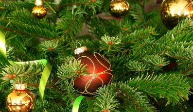 """Drzewko """"świąteczne"""", nie """"bożonarodzeniowe""""; protesty chrześcijan"""