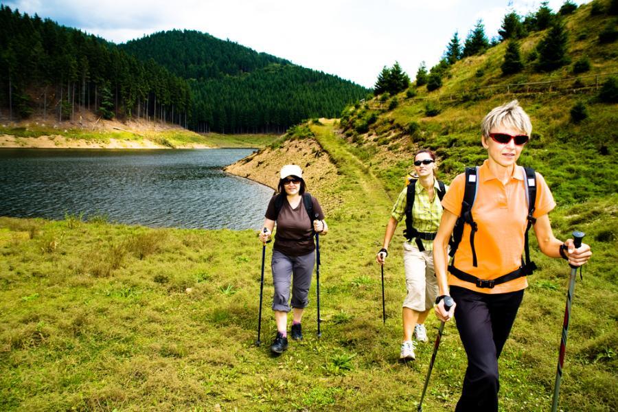 Noridc walking - świetny pomysł na wiosnę