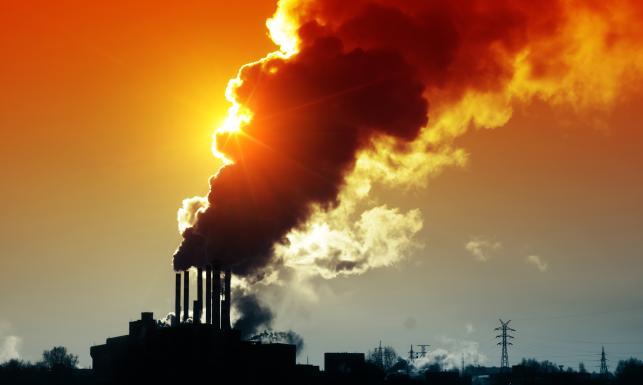 Jedzmy mniej mięsa! Najgorsze pomysły na redukcję emisji CO2