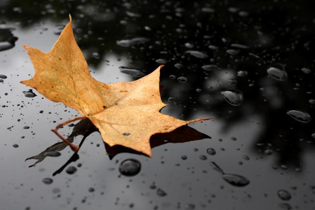 """6. """"Rain for Sleep"""" – Rain Sounds"""