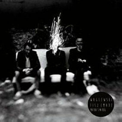 """Album roku: Waglewski Fisz Emade – """"Matka, Syn, Bóg"""""""