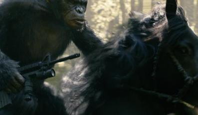 Amerykanie zainteresowani ewolucją planety małp