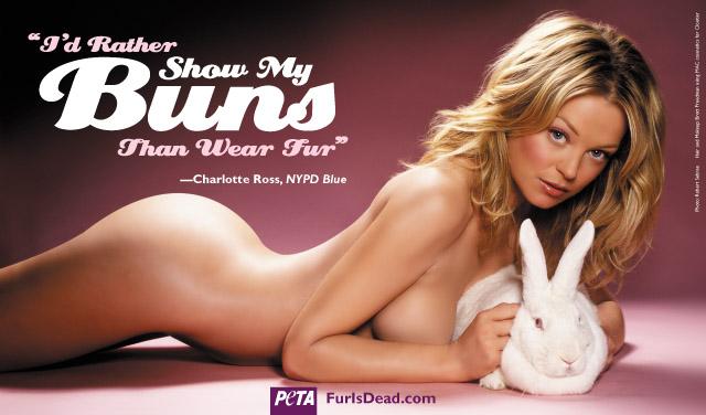 Jak można lepiej zaprotestować przeciwko torturowaniu zwierząt?