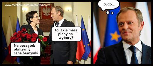 mem / Mięso wyborcze