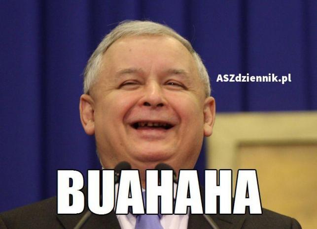 Mem powyborczy / @ASZdziennik