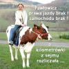 mem / Jan Kowalski