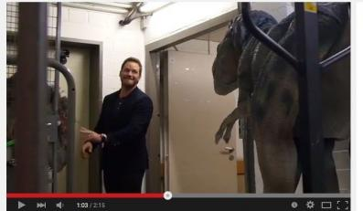 Chris Pratt wkręcony przez Wardęgę
