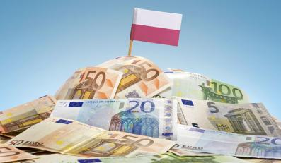 Sterta pieniędzy i polska flaga