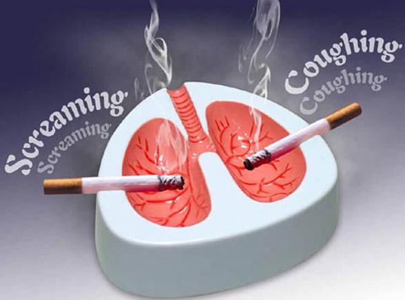 Zobacz, jak cierpią płuca palacza