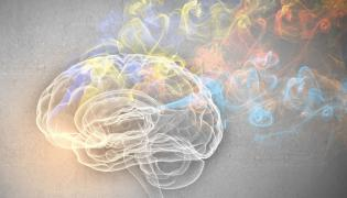 Palenie papierosów uszkadza mózg