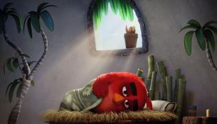 """Kadr z filmu """"Angry Birds"""""""