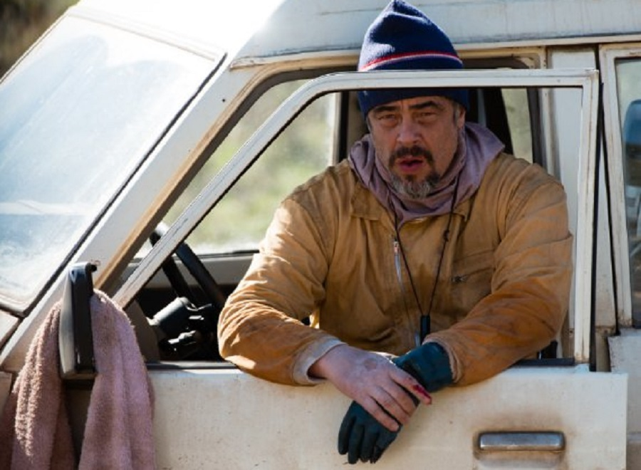Benicio del Toro ma doskonały dzień?