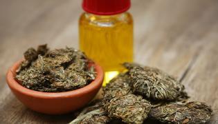 Susz konopny i olej konopny - medyczna marihuana